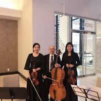 Bravo String Trio (for Wedding, Function, Party)