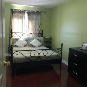 Room for female tenant in Brampton