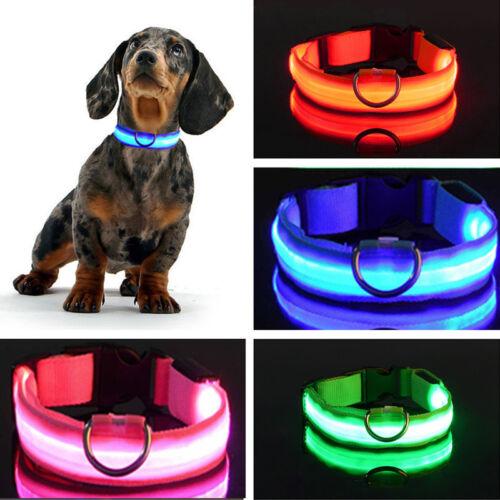 S-XL Hunde Leuchtend Halsband Nylon Leuchthalsband Für Nachtspaziergang Party
