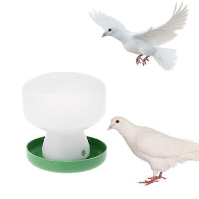 Pigeon Feeder Chicken Drinking Bird Quail Poultry Automatic Drink Water Supplies