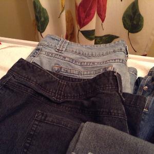 Plus Size Jean's & Capri's - 7 pairs London Ontario image 3