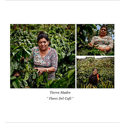Kaffeefarm von Maria Victoria Gomez
