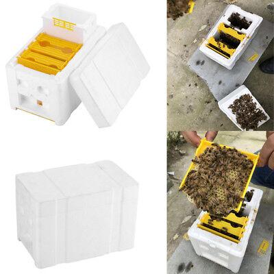 1 Set Harvest Bee Hive Beekeeping King Box Garden Pollination Box Beekeeper Tool