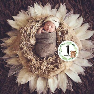12 Pcs/Set Newborn Milestone Memorial Month Stickers Floral Baby Monthly Sticker