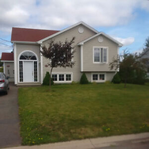 Nice & Bright - Lower Unit - DIEPPE Available October