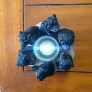 Rottweiler Circle of Dogs Votive Candle Holder