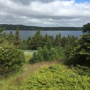 Oceanfront  LAND 12 Acres- 45 min from St. Johns
