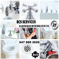 FAUCET LEAKING TOILET NEED REPAIRS-PLUMBING NEED CALL BCS PRO