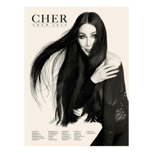 "Cher 2020 ""Here We Go Again"" Tour Poster 18""x24"" Brand New!"