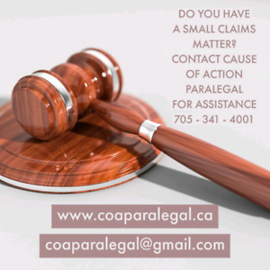 CAUSE OF ACTION PARALEGAL