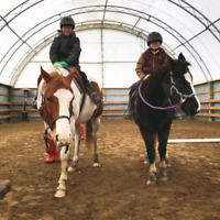 Christmas Horse Camp just minutes from Brooklin!
