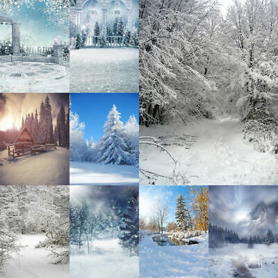 Winter Christmas Photo Background Photography Backdrop Snow Forest EAMAA2 MCAA2 ()