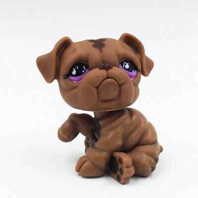 Littlest Pet Shop LPS #881 Chocolate Brown Bulldog Purple Teardrop Eyes Kids Toy](Purple Chocolates)