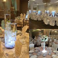 CENTERPIECE RENTAL•GLASS VASES•MERCURY GLASS•OSTRICH FEATHERS•