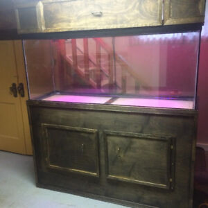 Massive 125 Gallon Aquarium With New Stand & Canopy! Great Deal