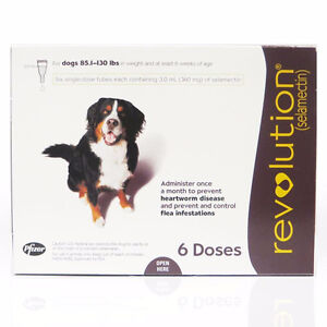 REVOLUTION FOR DOGS - 88-132 LBS (Heartworm and Fleas)