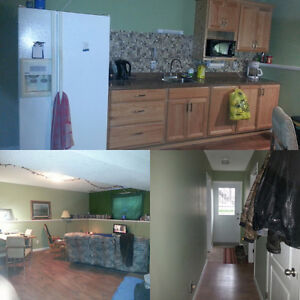 One bedroom basement for rent in High River- recently renovated