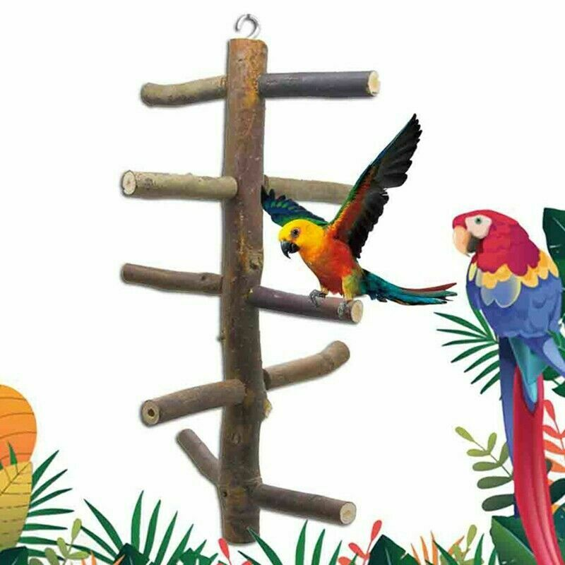 Parrot Bird Rotating Staircase Stand Play Fun Toys Gym Woode