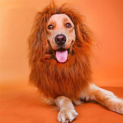 Pet Costume Lion Mane Wig Festival Fancy Dress up Halloween Clothes for Dog Cat (Lion Mane Dog Costume)