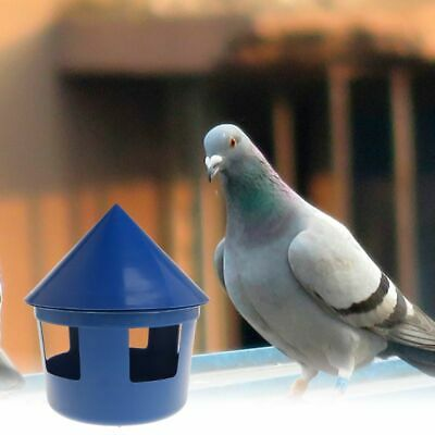Pet Birds Pigeon Feeder House Cover Feeding Food Dispenser Sand Plastic Case