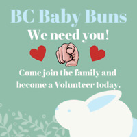 BC Baby Buns is looking for Volunteers!