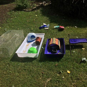 Lightly Used guinea pig/bunny supplies
