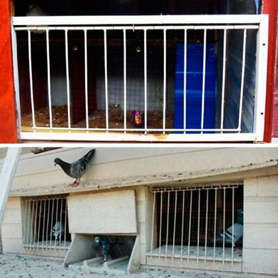 Pigeon Door Wire Bars Frame Entrance Trapping Loft Racing Birds Catch Supplies