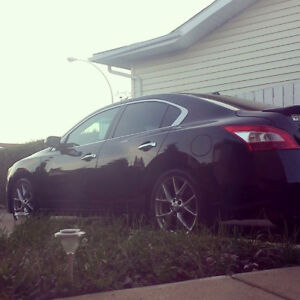 2010 Nissan Maxima SV Sport ONLY 63,000KMS $18,000 **OBO**