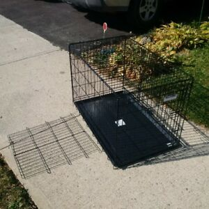 Medium Dog Crate, Precision brand, with divider