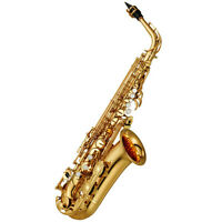 Looking For Alto Saxophone Lessons