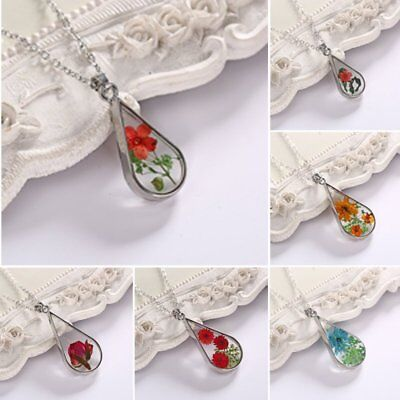 Transparent Glass Real Dried Flower Teardrop Chain Pendant Necklace Jewelry Gift (Teardrop Glass Flower Pendant)