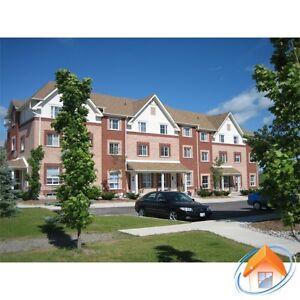 246 Spillsbury Drive up for rent  Peterborough Peterborough Area image 5