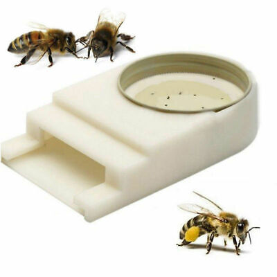 Honey Bee Beehive Entrance Hive Drinking Beekeeping Equipment Water Feeder Tool