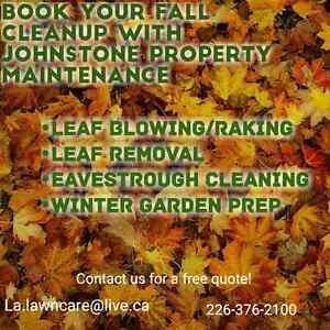 Leaf blowing London Ontario image 1