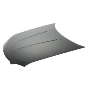 New Painted 2004-2006 Nissan Sentra Hood & FREE shipping