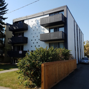 Renovated 1 bedroom Lower suite, concrete, Clean 1711 11 ST SW