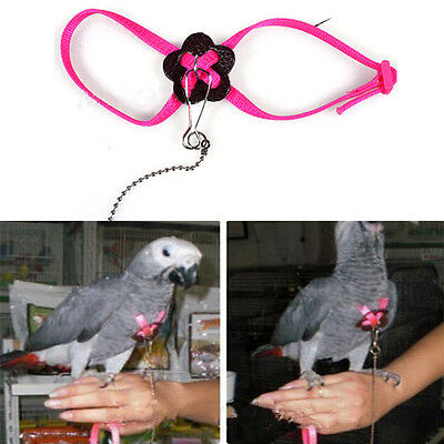 Parrot Adjustable Bird Harness and Leash Anti-bite Multicolor Light Soft SY
