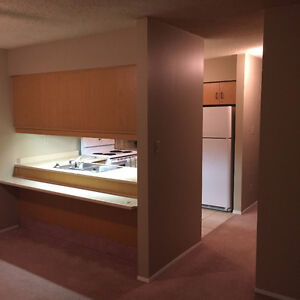 Two-Bedroom Apartment Condo for Rent