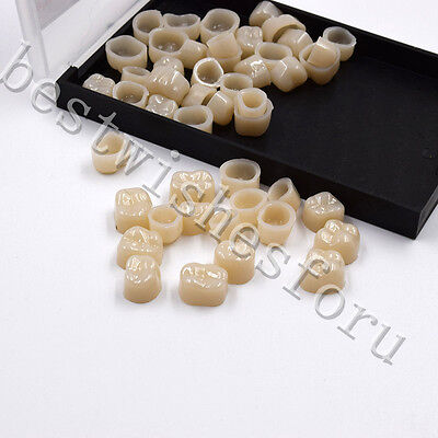 Dental Molar Temporary Crown Material Polycarbonate Caps Posterior Teeth 55 Pcs