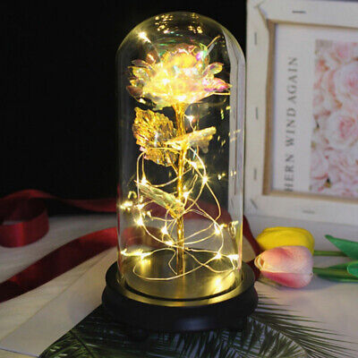 LED Luminous Gold Foil Rose Galaxy Mother's Day Valentine's Day Women Gift