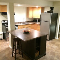 BEAUTIFUL, newly renovated, fully furnished, basement for rent
