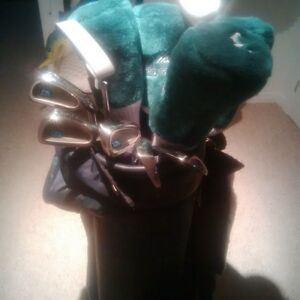 Woman Golf Clubs with New Bag, Shoes Gloves