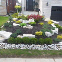 ALL YOUR LANDSCAPING NEEDS