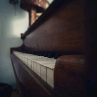 Piano lessons I come to you! $40-$50/hr