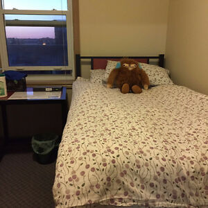 Female Spring Sublet (May-August) - 271 Lester Street