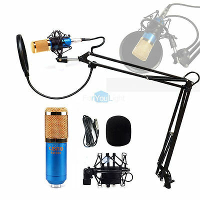 Pro Recording Blue Condenser Microphone   Shock Mount Pop Filter Desk Arm Stand