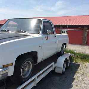 1981 Chevrolet C10 Cab ONLY