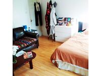 BIG Double Room with OWN GARDEN in Mile End, Bow, Victoria Park, E3, Hackney,