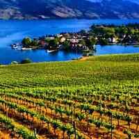 Motor bike tours thru Wine Country