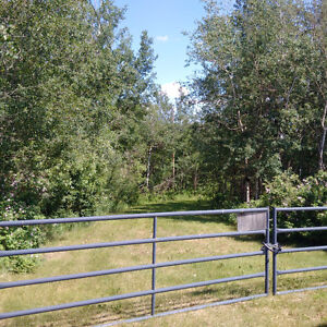 Rural Sturgeon County - Lily Lake Estates - 4.33 Acres for sale